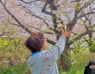 公園でフリスビーを持って男は、の写真・画像素材[1163836]
