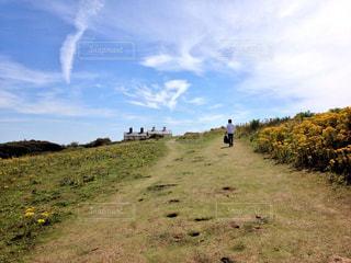 芝生の丘の上を歩く人々 のグループの写真・画像素材[1166115]