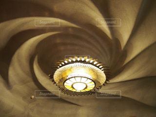 近くの花のアップの写真・画像素材[1196997]