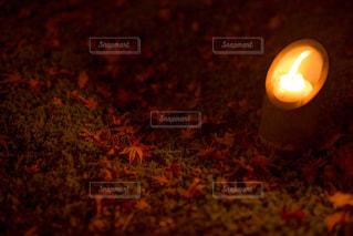 赤い絨毯。の写真・画像素材[876429]