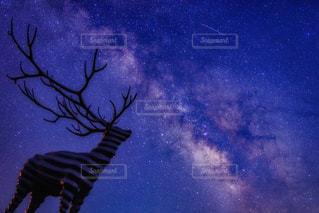 いつまでも眺めていたい輝く空の写真・画像素材[1249207]