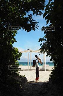 木の隣に立っている男の写真・画像素材[902116]