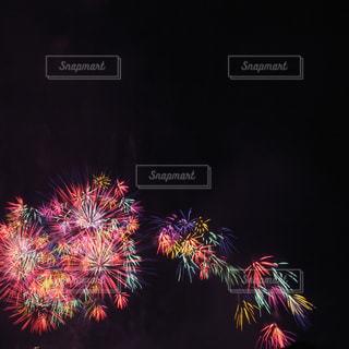 光の花束の写真・画像素材[1310634]