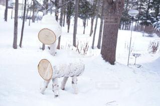 雪景色とクラフト細工の写真・画像素材[1737497]