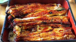 食事,和食,おいしい,外食,鰻
