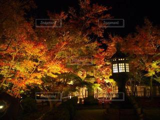 夕暮れ時の都市の景色の写真・画像素材[841126]