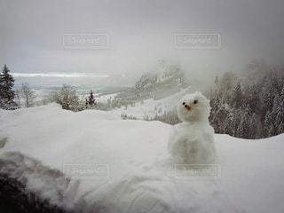 雪の中に立っている男の人の写真・画像素材[918535]