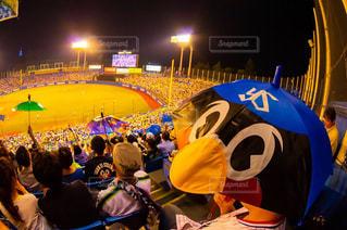 傘,鮮やか,野球,球場,ヤクルト