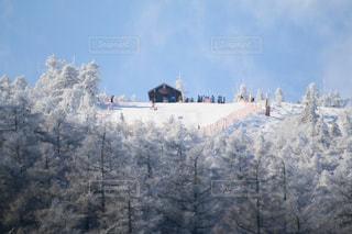 背景の山と木の写真・画像素材[957014]