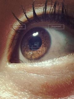 茶色,光,目,eye,裸眼