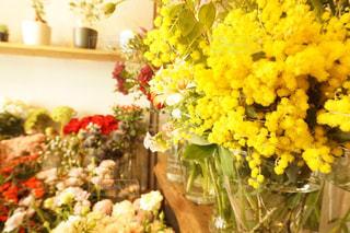 花の写真・画像素材[597198]