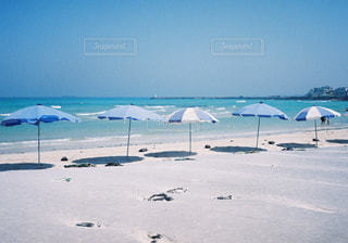 砂浜の上に座っての芝生の椅子のグループの写真・画像素材[717483]