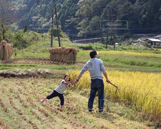 稲刈りの手伝いをしている女の子の写真・画像素材[1403603]