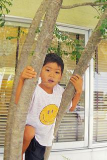 木のぼりしている男の子の写真・画像素材[1437890]