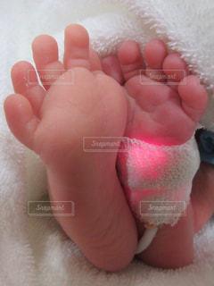 足,新生児,医療,NICU