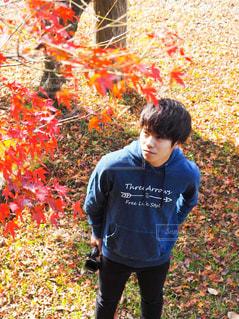 草の中に立っている小さな男の子 - No.858343