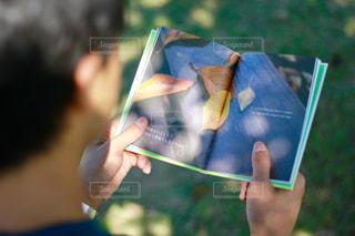 秋,本,読書,手,落ち葉,外,顔なし,読書の秋,本読み,木下