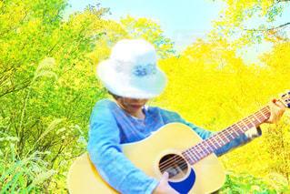 ギター - No.831554