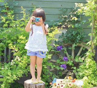 自然のお庭の写真・画像素材[1213738]