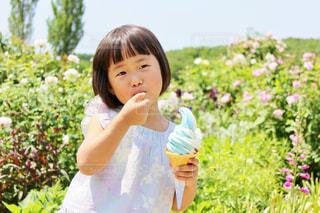 花を保持している小さな女の子の写真・画像素材[1358237]
