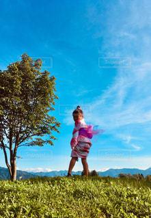 夏空の写真・画像素材[2420883]