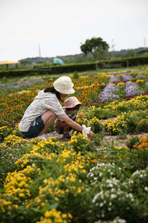 花の庭を持っている人の写真・画像素材[737470]