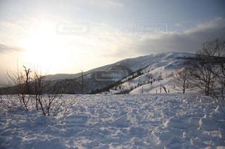 冬の写真・画像素材[892171]
