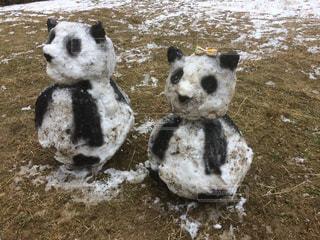 リボン,リボン つけた雪だるまパンダ