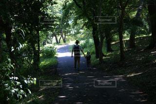 父と子の冒険 - No.950741