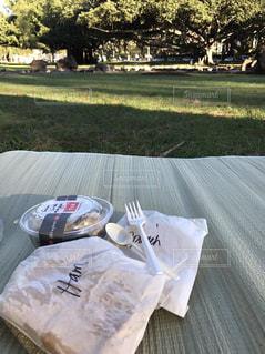 近くにピクニック用のテーブルの上 - No.985146