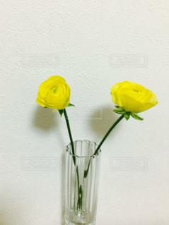 No.600889 黄色  かわいい  あざやか  花  インテリア  花瓶