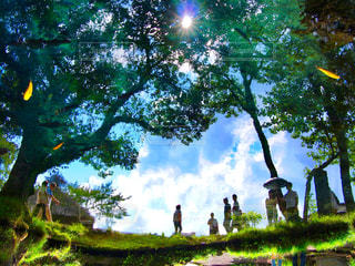忍野八海の写真・画像素材[812501]