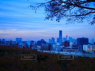 夕暮れ時の横浜の写真・画像素材[1229703]