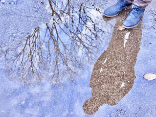 雨あがりの写真・画像素材[1822302]
