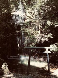 岩門の滝の写真・画像素材[2483840]