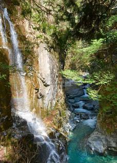 木々に囲まれた滝の写真・画像素材[2511902]