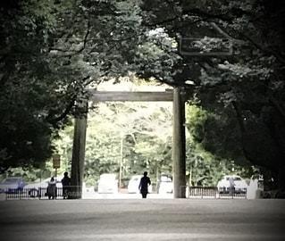 風景の写真・画像素材[2671030]