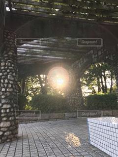 ライトの写真・画像素材[2676529]