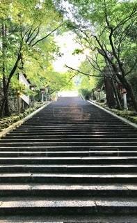 京都嵐山のお寺にての写真・画像素材[2738711]