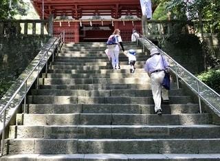 久能山の階段の写真・画像素材[2739289]