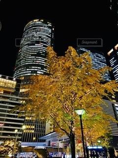 夜の都市の写真・画像素材[2775162]