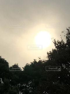 自然,空,屋外,太陽,日光,山,光,樹木,高い,クラウド