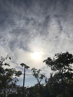 自然,空,屋外,太陽,雲,ライト,光,樹木,草木,クラウド