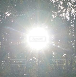 自然,空,太陽,日光,光,2020,熱田神宮,景観,自然光,初詣で,令和,令和2年,太陽マーク