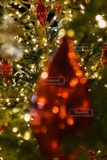 クリスマスツリーのクローズアップの写真・画像素材[2866277]