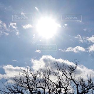 自然,空,屋外,太陽,白,雲,水色,光,樹木,くもり,草木,自然光,日中,ライン,クラウド