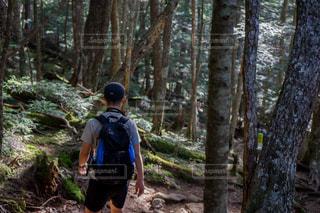 金峰山の登山の写真・画像素材[1417474]