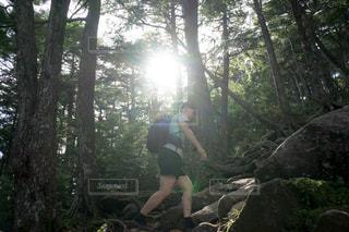 金峰山のトレッキングの写真・画像素材[1417482]