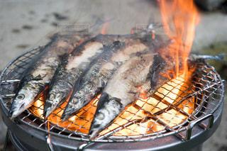 秋が旬の秋刀魚の写真・画像素材[1498843]
