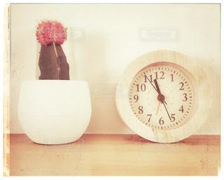 インテリア,サボテン,さぼてん,置き時計